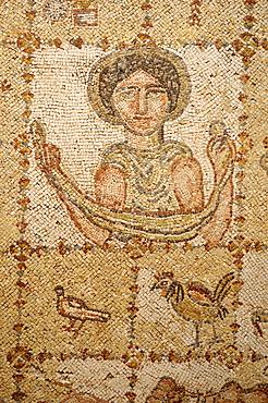 Byzantine mosaic display at historic Beit ed-Dine, Beiteddine Palace of Emir Bashir, Chouf, Lebanon, Middle East, West Asia