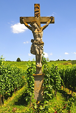 Stone crucifix in the vineyards of Orschwihr, Alsace, France, Europe