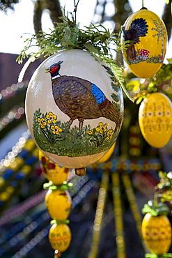 Painted Easter eggs, Bieberbach, Franconia, Bavaria, Germany, Europe