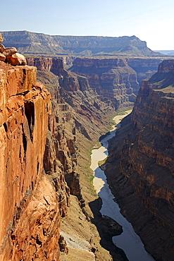 Toroweap Point, Grand Canyon North Rim, Colorado River, Arizona, USA