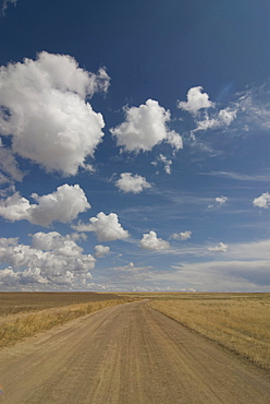 Dusty road in the steppe, Tamagaly Das, Kazakhstan, Central Asia