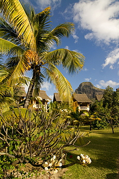 Natural idyll, Le Paradis Hotel, Mauritius, Africa