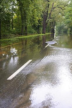 High water, flooded street in Dessau, Elbe river flood in 2010, Saxony-Anhalt, Germany, Europe