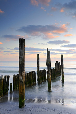 Groynes on a beach near Juliusruh, Rugia island, Mecklenburg-Western Pomerania, Germany, Europe