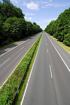 Autobahn, empty highway through the Frankfurter Stadtwald woods, Frankfurt am Main, Hesse, Germany, Europe