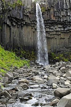 Svartifoss Waterfall, Skaftafell National Park, Iceland, Europe