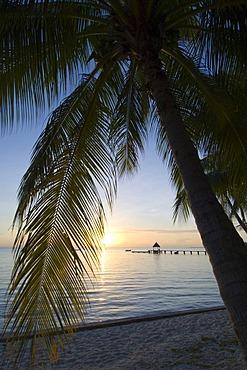 Rangiroa atoll, Tuamotu Archipelago, French Polynesia, Pacific Ocean