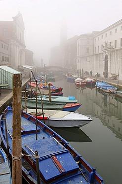 Chioggia on the Adria, Riva Vena, Veneto, Italy, Europe