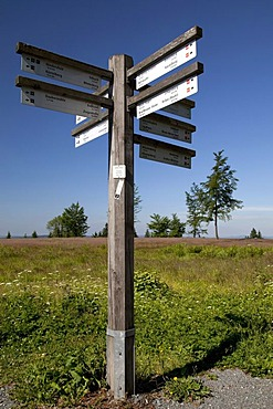 Signpost on Kahlen Asten Mountain, Winterberg, Sauerland, North Rhine-Westphalia, Germany, Europe
