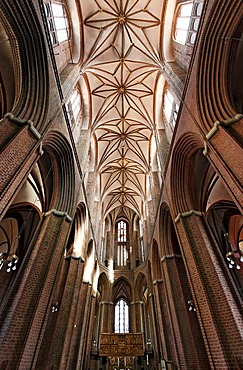 Gothic Basilica of St. Nicolai, look into the starry vault, old town, Lueneburg, Lower Saxony, Germany, Europe