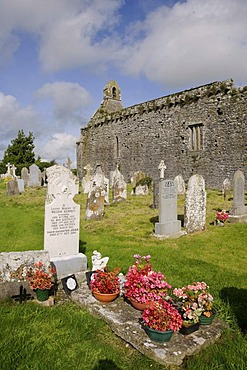 Dominican monastery ruins, Lorrha, County Tipperary, Munster, Ireland, Europe