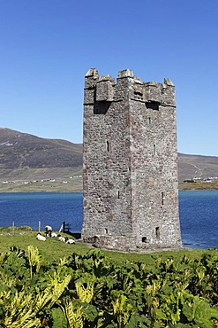 Carrickahowley Castle, Granuaile's Tower, Cloghmore, Achill Island, County Mayo, Connacht province, Republic of Ireland, Europe
