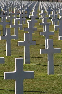 Graves at the Normandy American Cemetery and Memorial above Omaha Beach, site of the landing of the Allied invasion forces on D-Day 6 June 1944, Second World War, Calvados, Region Basse-Normandie, Normandy, France, Europe