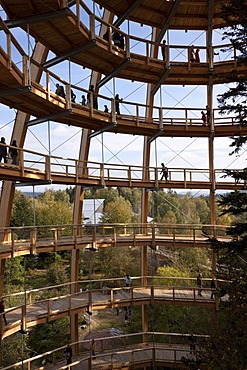 Tree-top walk, Neuschoenau, Bavarian Forest National Park, Lower Bavaria, Bavaria, Germany, Europe