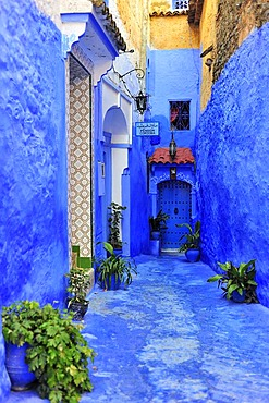 Narrow alley painted blue with the medina of Chefchaouen, Riff Mountains, Morocco, Africa