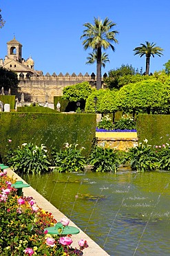 The gardens of Alcazar de los Reyes Cristianos, Alcazar of Catholic Kings, Cordoba, Andalusia, Spain, Europe