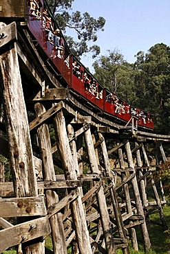 Puffing Billy Railway passenger carriages crossing the Trestle Bridge, built in 1899, The Dandenong Ranges, Victoria, Australia