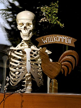 "Human skeleton with a German welcome sign ""Willkommen"" for physiotherapy practice, Bavaria, Germany, Europe"