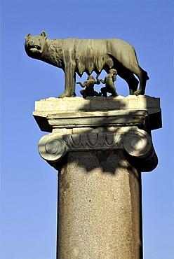 Capitoline Wolf, Romulus, Remus, Piazza del Campidoglio Capitol Square, Rome, Lazio, Italy, Europe