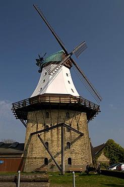 Smock mill, Kappeln, Schlei, Schleswig-Holstein, Germany, Europe