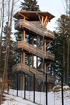 Observation tower in the wildlife enclosure, Naturpark Bayerischer Wald national park, Bavarian Forest, Bavaria, Germany, Europe
