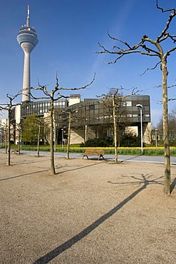 Parliament building and Rheinturm tower, Duesseldorf, state capital of North Rhine-Westphalia, Germany, Europe