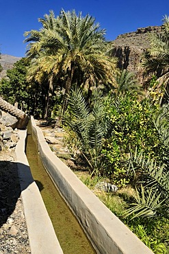 Traditional Falaj canal at Wadi Misfah, Hajar al Gharbi Mountains, Dhakiliya Region, Sultanate of Oman, Arabia, Middle East