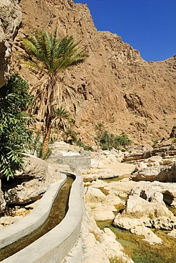 Falaj canal, irrigation system, of Wadi Shab, Hajar ash Sharqi Mountains, Sharqiya Region, Sultanate of Oman, Arabia, Middle East