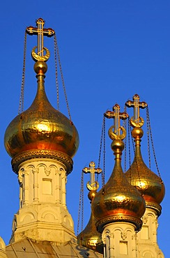 Gold-plated onion domes of the Russian Orthodox church of Geneva in the evening light, Geneva, Switzerland, Europe