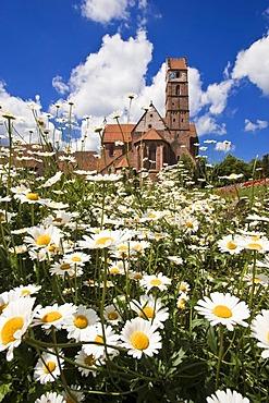 Abbey church, Benediktinerkloster Benedictine abbey Alpirsbach, Black Forest, Baden-Wuerttemberg, Germany, Europe