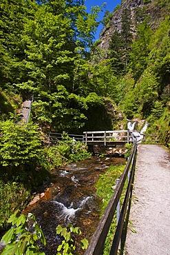 Lierbach river at the Allerheiligenwasserfaelle, All Saints' Waterfalls, Oppenau, Black Forest, Baden-Wuerttemberg, Germany, Europe