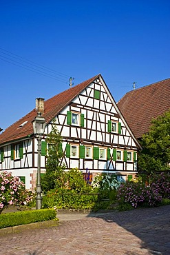 Townscape Im Staedtle old town district, Bad Teinach Zavelstein, Black Forest, Baden-Wuerttemberg, Germany, Europe