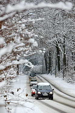 Snow-covered country road in a forest, winter road conditions, Essen, North Rhine-Westphalia, Germany, Europe