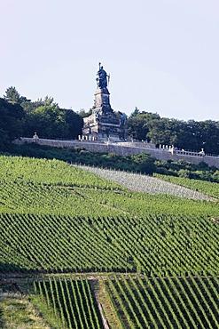 Longshot of the Niederwalddenkmal memorial near Ruedesheim and vineyards, Mittelrheintal valley, Hesse, Germany, Europe