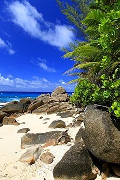 Palm beach with granite cliffs on Anse Bazarca beach, Mahe island, Seychelles, Africa, Indian Ocean