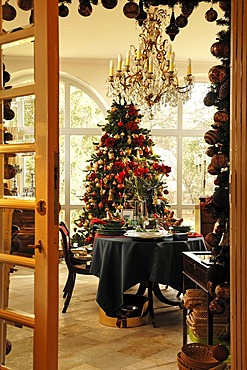 View into a conservatory with a decorative table setting in front of a decorated Christmas tree for sale, Villa & Ambiente store, Im Weller, Nuremberg, Middle Franconia, Bavaria, Germany, Europe