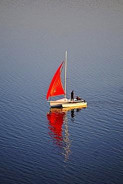 Sailboat, red sail on the Baltic Sea, Biosphaerenreservat Suedost-Ruegen Biosphere Reserve, Ruegen island, Mecklenburg-Western Pomerania, Germany, Europe