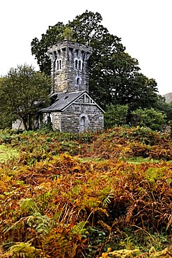 Old ruin, Killarney National Park, County Kerry, Ireland, Europe