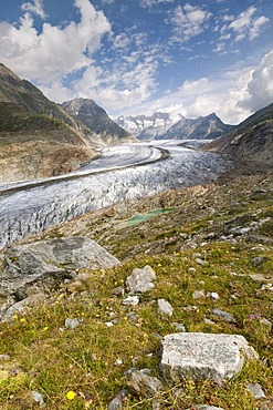 Aletsch Glacier in front of the Gross Wannenhorn and Klein Wannenhorn Mountains, Bernese Alps, Valais, Switzerland, Europe