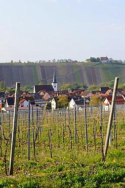 Nordheim with Vogelsburg Monastery, Volkach, Main River loop, Lower Franconia, Bavaria, Germany, Europe