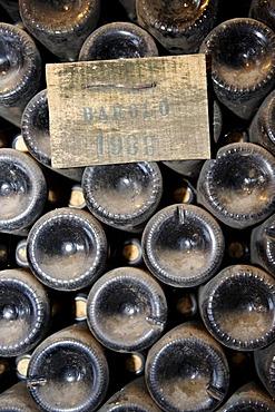 Wine-cellar, Cantina di Borgogno, winery, Barolo, Provincia di Cuneo, Piedmont, Italy, Europe
