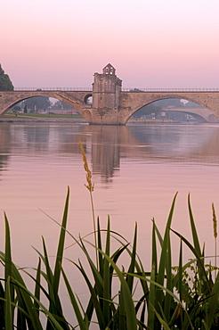 Saint Benezet bridge over Rhone river, Avignon, Vaucluse, Provence-Alpes-Cote d'Azur, Rhone valley, Provence, France, Europe