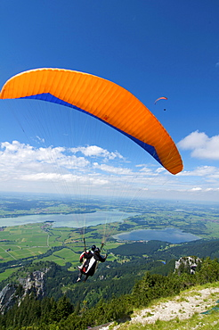 Paraglider on Tegelberg mountain with a view over Forggensee Lake, Fuessen, Allgaeu, Bavaria, Germany, Europe