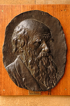 Relief Portrait of Charles Darwin by Horace Montford in Christ's College, St. Andrews Street, Cambridge, Cambridgeshire, England, United Kingdom, Europe