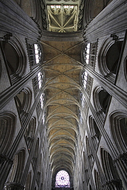 Ceiling of the nave of a Gothic cathedral, Rouen, Normandy, France, Europe
