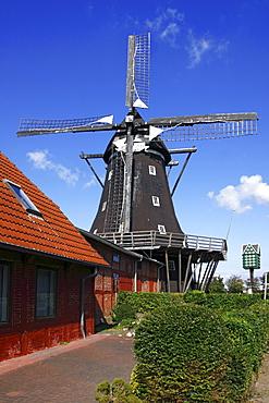 Old windmill, Muehlenmuseum mill museum in Lemkenhafen, Fehmarn island, Ostholstein district, Schleswig-Holstein, Germany