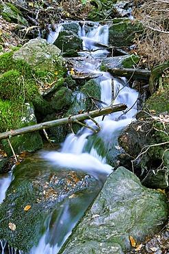 Steinbachfaelle water falls, Falkenstein mountain, National Park Bavarian Forest, Lower Bavaria, Germany, Europe