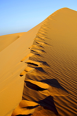 Blown over foot prints on sand ridge of a desert dune, Ubari Sand Sea, Sahara desert, Libya, Africa