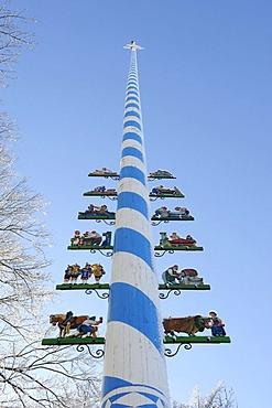 Maypole in winter, Holzhausen at Lake Starnberg, Upper Bavaria, Bavaria, Germany