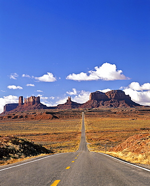 Road to Monument Valley, Navajo Nation Reservation, Colorado Plateau, Arizona, USA
